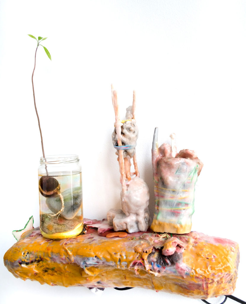 <i>Changing Hand</i>, 2017. Materials: driftwood wall-mount shelf made by Piotr Shtyk, LED light, steel, paraffin wax, yerba mate (cup, straw, bag, and spoon set from Paraguay) from Edwin Camacho, Alpaca wool from Mary Walling Blackburn, magnolia seed pod, rubber bands, garlic, grass, sticks, paper fibers, pigment, ball of garbage, glow-in-the-dark-stars, glass jar, rocks, carrot top, starfish, orbies, avocado sapling